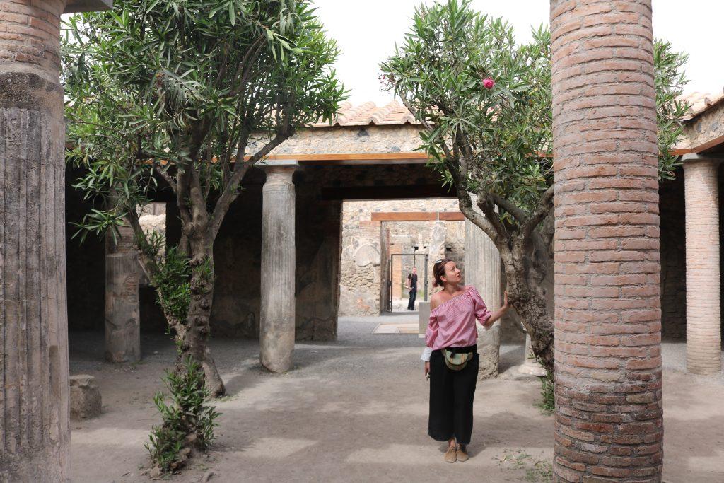 Pompei. Iunieta Sandu